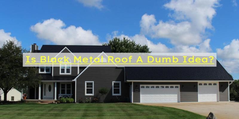 is black metal roof numb choice